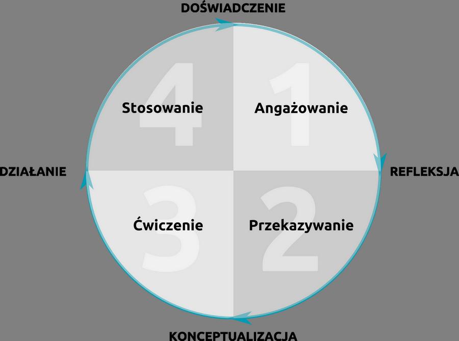 Cykl Kolba w praktyce